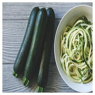 Black Beauty Zucchini Squash (Cucurbirta pepo)