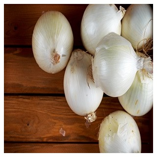 Sweet Spanish Onion