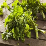 Spring Rapani Raab Broccoli