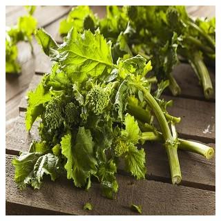 Spring Rapani Raab Broccoli (Brassica rapa)