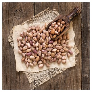 Bush Mexican Pinto Beans Pinto Bean Seeds Theseedguy Net