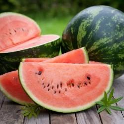 Crimson Sweet Watermelon (Citrullus lanatus)