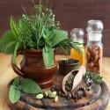 15 VARIETY MEDICINAL HERB Heirloom Seed Package