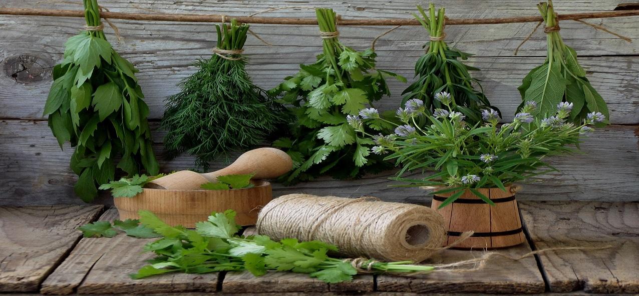 HEALTHY herbs!!